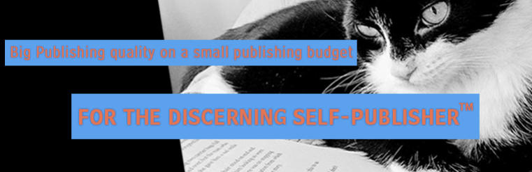 New Standards Publishing Group Big Publishing quality for the discerning self-publisher (tm)